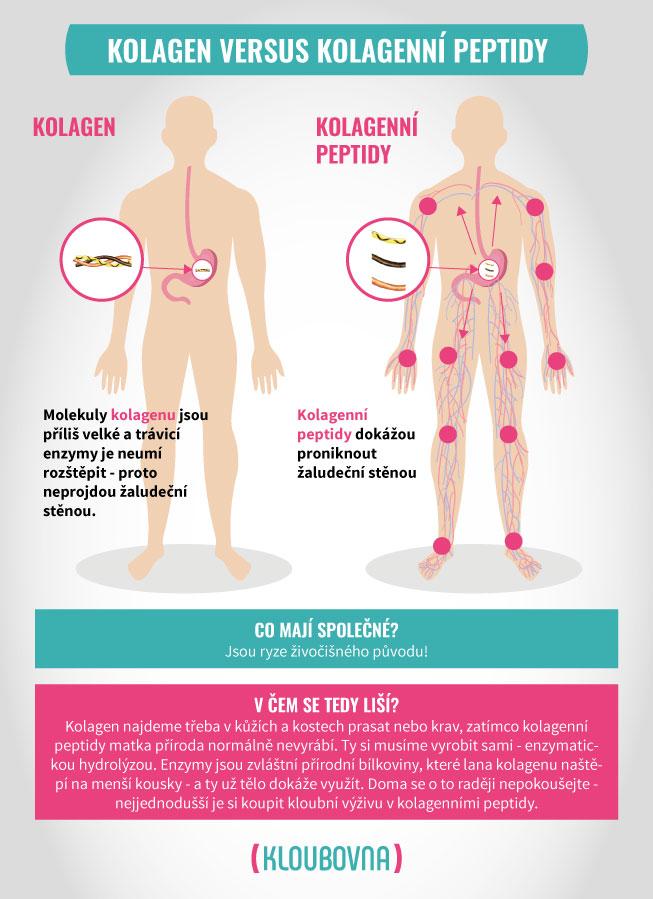 kolagen_peptidy_2